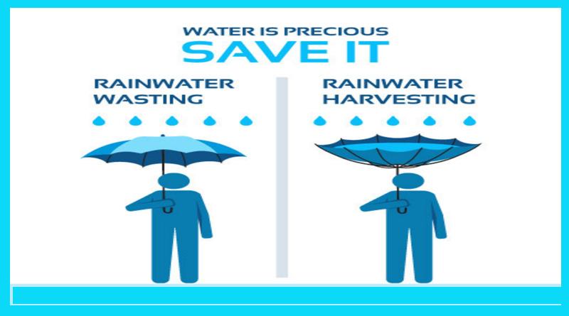 Rainwater Harvesting Graphic