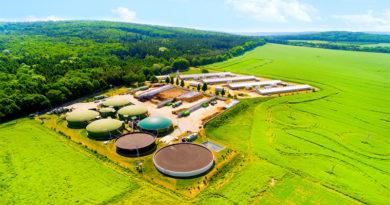 Bio Mass Fuel Plant