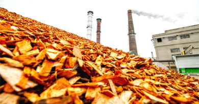 NTPC To Issue Tender for Biomass Pellets, To Combat Air Pollution