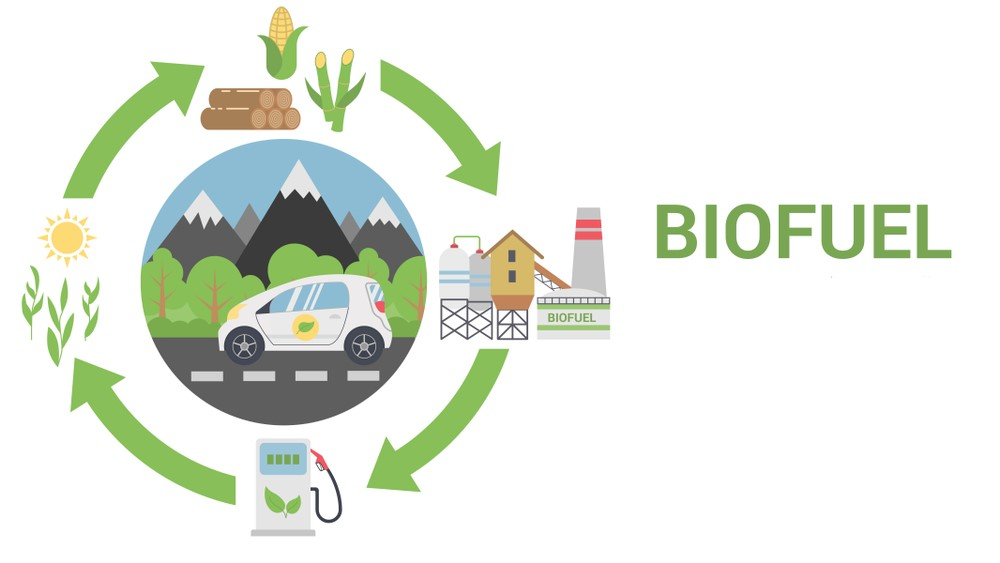 biofuel sector a waiting game latest news on renewables
