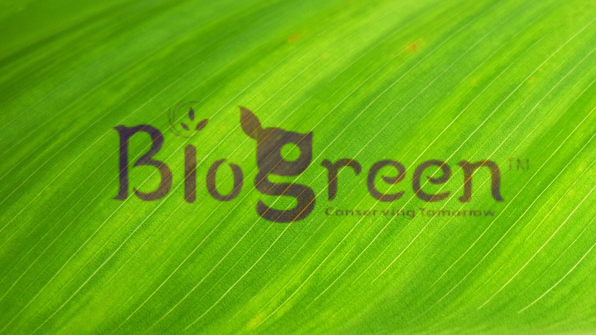 BioGreen Biotech, A plastic-like bag with all its properties