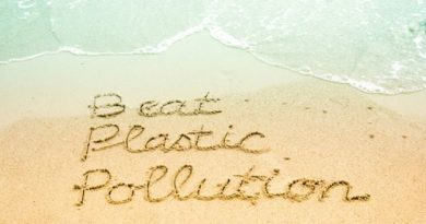 Beat Plastic Pollution written on beach