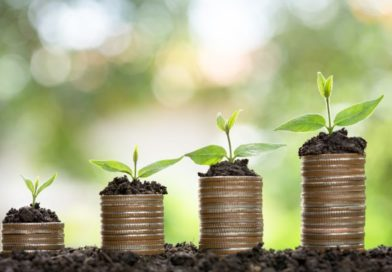 Plant growing on Money