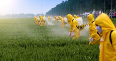 Pesticides Ban