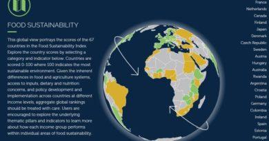 Food Sustainability Globe