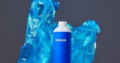 Cove Bottle