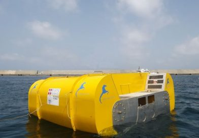 Inertial Sea Wave Energy Converter (ISWEC)