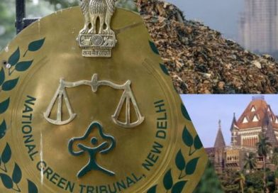 NGT Seeks Maharashtra Waste Management Report; HC Allows More Dumping