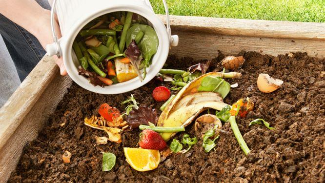 Composting Pit