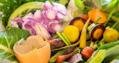 Food scraps and waste