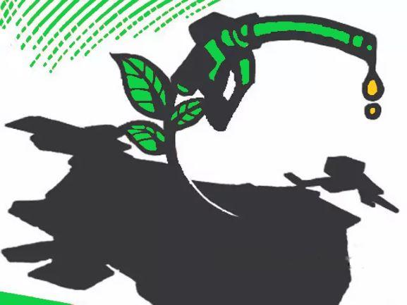Bio Fuel in India