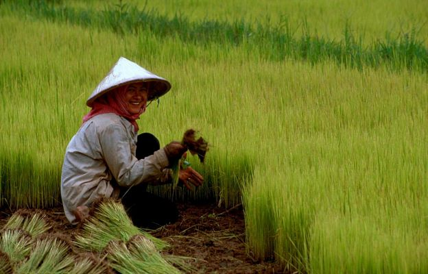 China and Its Food Security: Issues and Opportunities