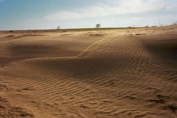 Land Degradation Desert
