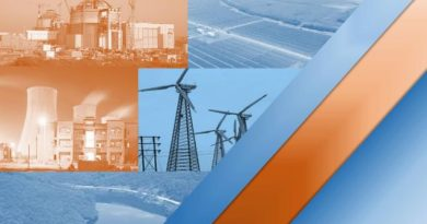 CEA Report on Energy Mix 2029-30