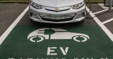 EVs to Cost as Much As Conventional Vehicles in 2-3 Years: Kant