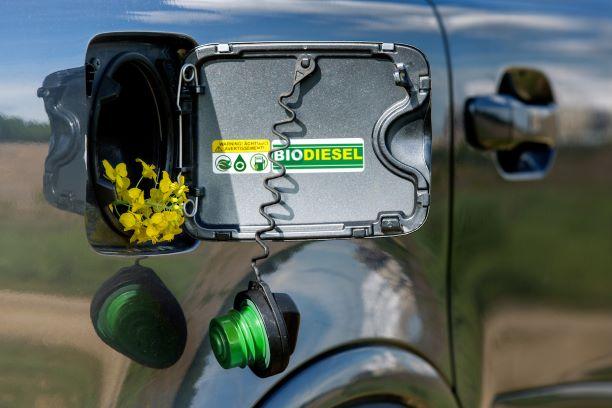 biodiesel on car fuel tank