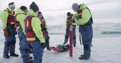 ice samples Arctic region have microplastics