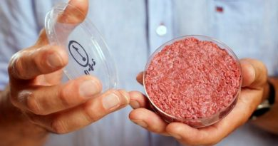 lab grown meat picture