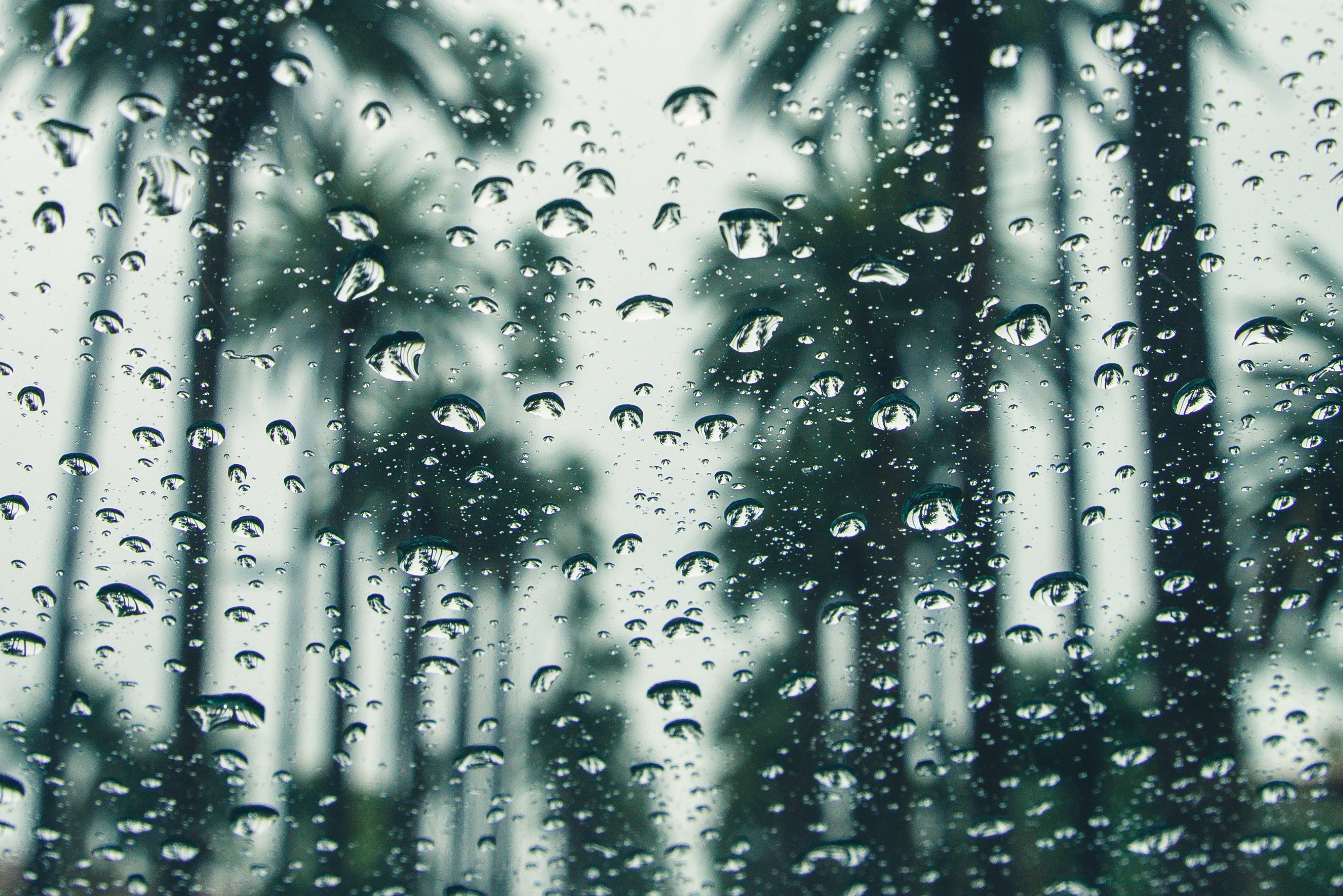 Representative photo of rainfall.