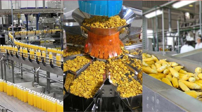 Mega Food Parks Is Govt's Answer to Reduce Grain Wastage