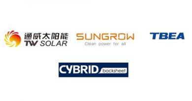 4 chinese solar champions