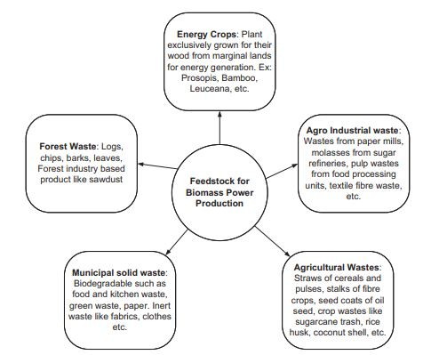 Biomass Classification