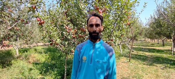Fayaz-Mir,-an-Orchadist-of-Kraalmad-village-in-South-Kashmir