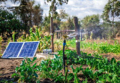 solar water fitration
